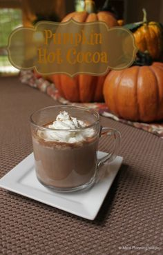 Capture the taste of fall with pumpkin and chocolate in this simple and delicious pumpkin hot cocoa. Makes enough to share--if you're willing that is!| Recipe at MealPlanningMagic.com #12wksxmastreats