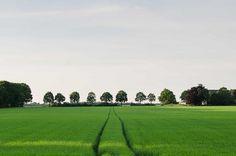 Landal GreenParks Drenthe. Land van Bartje