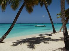Saona Island, Fauna Marina, Florida Beaches, Dominican Republic, Island Life, The Good Place, Caribbean, Surfing, Places To Visit
