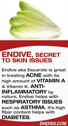 Endive aka Escarole is great in treating ACNE with its high amount of Vitamin A & K. ANTI-INFLAMMATORY by nature, Endive helps with RESPIRATORY DISORDERS such as ASTHMA. It's high fiber content helps with DIABETES. #Dherbs