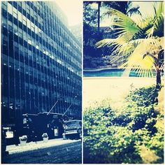 What a difference from the weather at our NY office vs. our FL office! Which would you prefer this winter?
