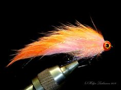 It's The One Fly in which we put all our confidence Crappie Jigs, Squirrel Tail, Saltwater Flies, Fly Fishing Gear, Fly Tying, Streamers, Nightmare Before Christmas, Outdoors, Tie