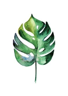 Monstera Aquarell Two Poster in the group Posters Prints Botanical at Desenio AB 10070 Watercolor Leaves, Watercolour Painting, Watercolors, Groups Poster, Plant Painting, Poster Prints, Art Prints, Posters, Leaf Art