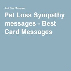 what to write for a pet sympathy card letternew co