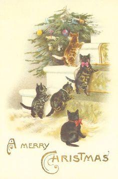 Vintage kittens Christmas card
