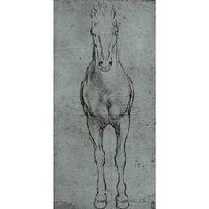 Da Vinci Horse Study