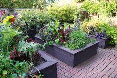 Example Garden (raised wooden planters) different color for raised garden beds Raised Planter, Raised Garden Beds, Raised Beds, Outdoor Gardens, Indoor Outdoor, Narrow Garden, Garden Inspiration, Garden Ideas, Backyard Ideas