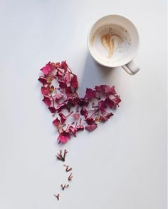 Are you looking for inspiration for good morning coffee?Check this out for very best good morning coffee ideas. These enjoyable pictures will make you enjoy. But First Coffee, I Love Coffee, My Coffee, Flat Lay Photography, Coffee Photography, Good Morning Coffee, Coffee Break, Coffee Mornings, Momento Cafe
