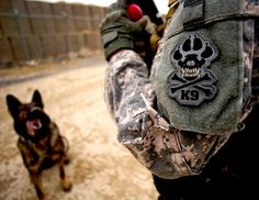Navy SEAL Dogs - ABC News Pascual Gutierrez praises and prepares to give Coley a chew toy Feb. 18, 2011, at Forward Operating Base Lagman, Afghanistan, after Coley successfully sniffed out explosive devices during an explosive device detection training session.