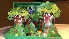 Rainforest diorama shoebox