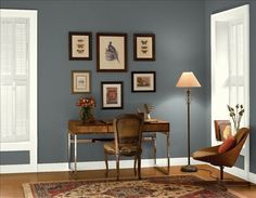 Office Paint Colors dramatic home office! back wall color: gray shower - columns