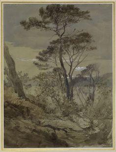 Ruskin, John - Stone Pines at Sestri, Gulf of Genoa