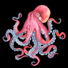 This octopus design is illustrated by Belarus based artist Nikiparonak Octopus Drawing, Octopus Painting, Octopus Art, Octopus Sketch, Octopus Images, Octopus Squid, Octopus Bathroom, Octopus Shower Curtains, Bathroom Beach