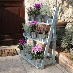 Three Tier Herb And Plant Theatre With Zinc Pot Set wooden plant 'theater' could be cuter still w/holes to sink pots or pails a bit Back Gardens, Small Gardens, Outdoor Gardens, Plant Theatre, Set Theatre, Garden Pictures, Wood Pallets, Pallet Wood, Pallet Potting Bench