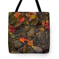 Washing away Autumns