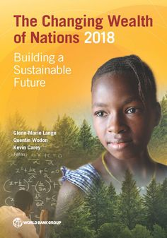 The Changing Wealth of Nations 2018 : Building a Sustainable Future (EBOOK) FULLTEXT: https://openknowledge.worldbank.org/handle/10986/29001