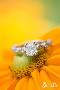 Pavé-set in this beautiful cathedral ring is crafted of quality 14 karat white gold, this vintage inspired design is the perfect backdrop for the center gemstone of your choice