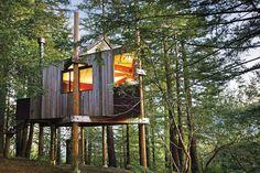 A treehouse at The Post Ranch Inn, California