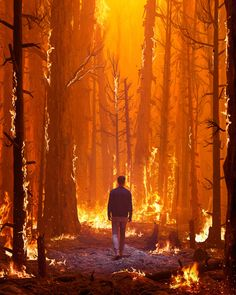 World On Fire, Earth On Fire, Fire Element, Orange Aesthetic, Aesthetic Colors, Into The Fire, Character Aesthetic, Illustration Artists, Art Plastique