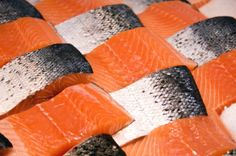 Fresh Salmon Fillets from Fisho SIngleton