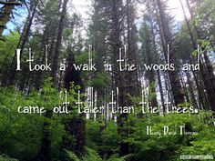 Hiking Quotes: Wisdom for the Trail - Adventure Strong