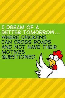 Poor chickens