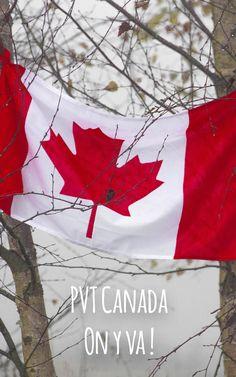 Quels sont les visas disponibles au Canada ? Comment aller vivre au Canada ? Quelles sont les démarches ? On vous dit tout ! Quels sont les conditions postuler à Expérience Internationale Canada ?  #assurancevoyage #canada #expatriation #expatriationcanada #voyagecanada #canada #pvt #pvtcanada #vivrecanada #travaillercanada Pvt Canada, Visa Canada, Voyage Canada, Flag, Dit, Manualidades, Future, Visa For Canada, Science