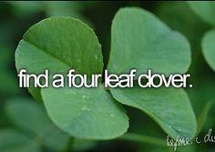 I found a 5 leaf clover! ~Bobbie Sue