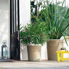 Poubelles de jardin en zinc peintes et recouvertes de corde pour faire de beaux pots de fleurs