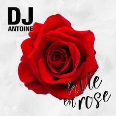 DJ Antoine – La Vie En Rose (DJ Antoine vs. Mad Mark 2k17 Mix)  Style: #House Release Date: 2017-05-12 Label: Houseworks     Download Here  https://edmdl.com/dj-antoine-la-vie-rose-dj-antoine-vs-mad-mark-2k17-mix/