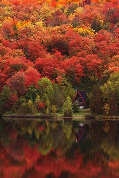 "coiour-my-world: ""Autumn at the Lake, The Laurentains, Quebec ~ photo by Alan Marsh """