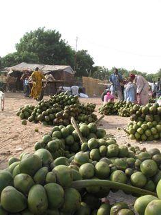 Marché baie de Saloum  Senegal