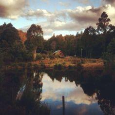 41Degrees South Salmon Farm Montana,Tasmania | SMOKED SALMON RILLETES  |  salmon rillettes platters and swampwiches also deserve your attention | Ziggy Pyka, owner