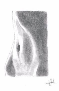 Ude art photography curves life 29 ideas for 2019 Dark Art Drawings, Pencil Art Drawings, Art Drawings Sketches, Contour Drawings, Charcoal Drawings, Horse Drawings, Body Drawing, Figure Drawing, Drawing Art