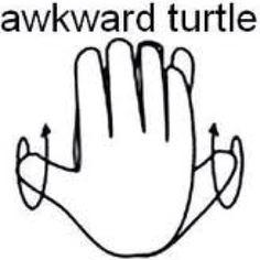 Awkward Turtle(: