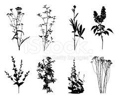 flores simples en blanco y negro - Buscar con Google