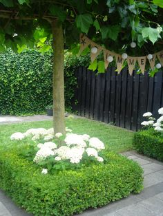 Combination of white flowers ( annuals?), small shrubs (trimmed) & tree.