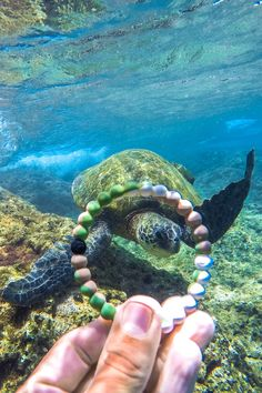 Lokai is helping spread the message of the world's natural balance by protecting wildlife with World Wildlife Fund.