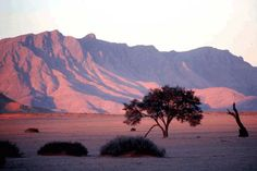 Looking for Namibia Holiday Packages? African Inspiration delivers exciting and idyllic travel packages; Namibia will be yours to discover and explore. Wonderful Places, Beautiful Places, Beautiful Pictures, Landscape Photos, Landscape Photography, Desert Mountains, Namibia, Holiday Images, Sand Art