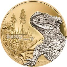 2018 Cook Islands 25 Gram Shades of Nature Sun Gazer Lizard Silver Proof Coin - Art in Coins