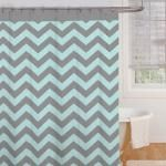 Ryder Shower Curtain in Aqua/Grey