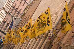 El Palio de Siena es una carrera de caballos de origen medieval en la cual compiten 10 de las 17 contradas de la ciudad, que vienen elegidas mediante sorteo.  Hay dos Palios, el 2 de Julio y el 16 de Agosto.
