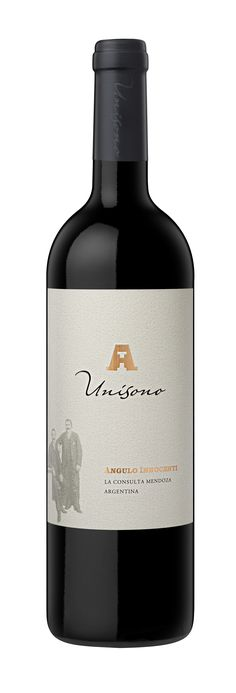 """Angulo Innocenti Unisono 2010 - 92 points - Wine spectator """"This dark, suave red mixes creamy cassis and dark blackberry coulis notes with layers of mocha, spice and savory cured olive. Compact, with fine tannins and juicy acidity pushing along the fruit-filled finish. Malbec, Cabernet Sauvignon and Cabernet Franc. Drink now through 2015."""""""