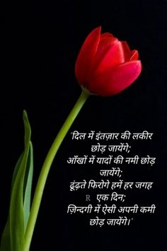 Best Love Quotes, Sad Quotes, Love Thoughts, Zindagi Quotes, Photo Quotes, Attitude Quotes, Dil Se, Writing, Feelings