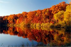 Autumn in Michigan.  Holly Recreation area
