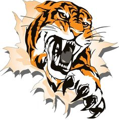 Related image Tiger Claw Tattoo, Scratch Tattoo, Tiger Images, Tiger Shirt, Background Images For Editing, Basketball Design, Lion Art, Animal Heads, Wooden Art