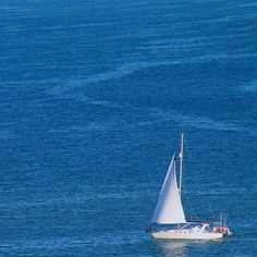 Newcastle, Instagram Photo Contest, Yachts, Boating, Sailing, Summer, Target, Australia, Fun