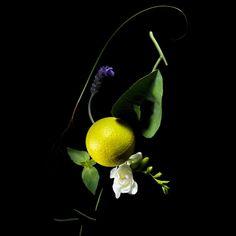 citrus_guerlain_maquiagem_materia_prima_perfume