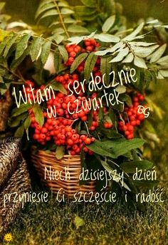 Good Morning, Plants, Food, Buen Dia, Bonjour, Essen, Meals, Plant, Good Morning Wishes