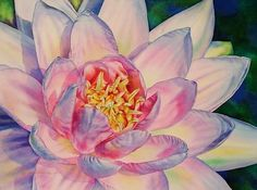 Nymphaea by Laurie Asahara Watercolor ~ 22 x 30